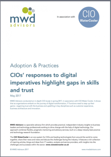 CIO Survey
